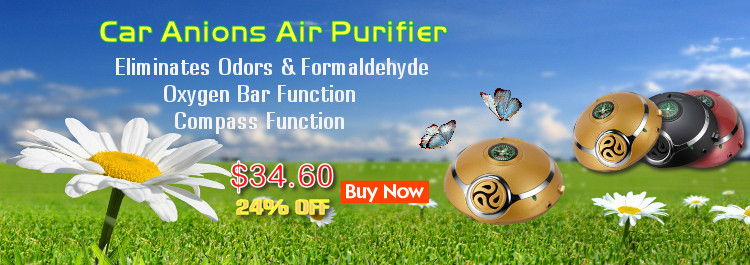Car Anions Air Purifier